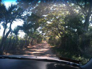 Zemis Driveway