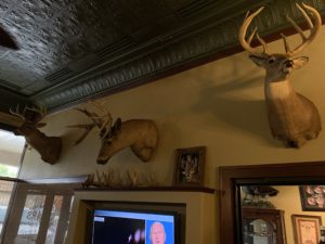 Pic of dear heads mounted on wall at Angelini's